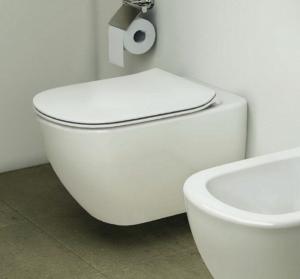 Vas WC Suspendat Ideal Standard Tesi5