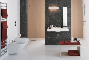 Vas WC Suspendat Kolo EGO Rimfree by Antonio Citterio2