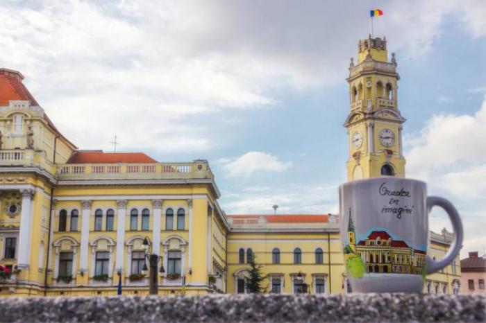 Cana pictata - Primaria Oradea