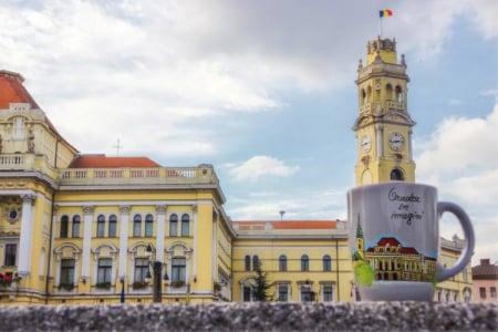 Cana pictata – Primaria Oradea