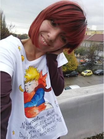 Tricou pictat - Micul Prinț și Vulpea3