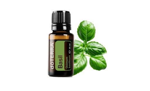 Ulei Esential Basil (busuioc), 15 ml, DōTerra [0]