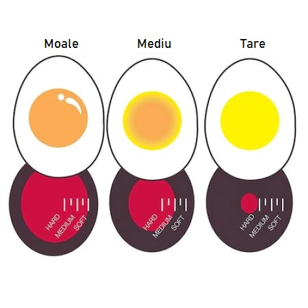 Cronometru cu Indicator pentru Firbere Oua, Universal [5]