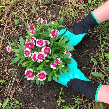 Manusi pentru Gradinarit cu 4 Gheare din PVC, pentru Greblat, Plantat, Sapat4
