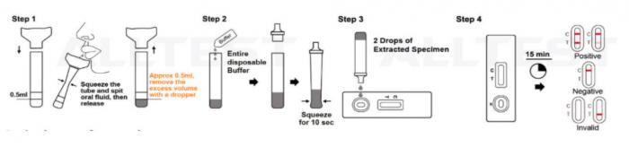 Test covid 19 saliva 3