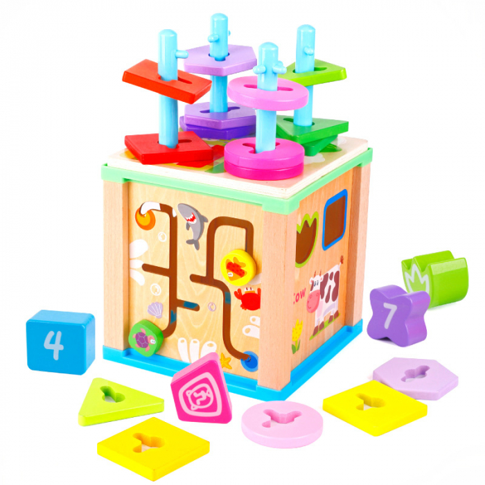 Cub educativ multifunctional 5 in 1, coloane sortatoare 0
