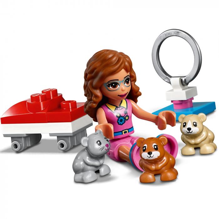 LEGO Friends-Terenul De Joaca Al Hamsterului Oliviei [3]