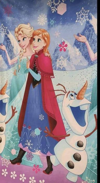 Lenjerie de pat Frozen 2 [1]