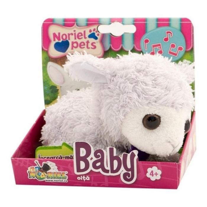 Noriel Pets Baby - Oita [0]