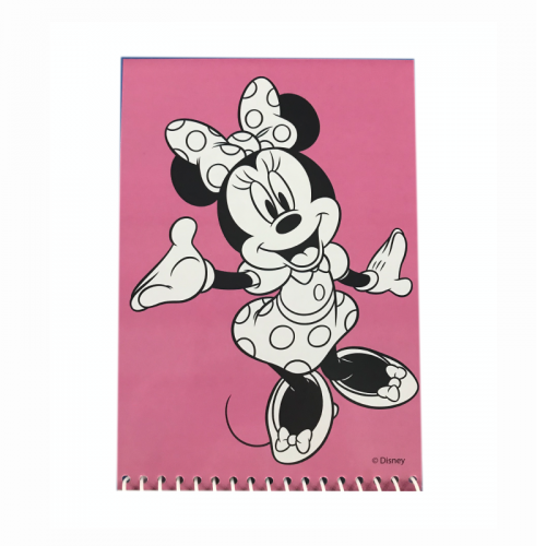 Picteaza cu apa Mickey si prietenii 1