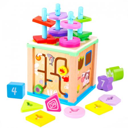 Cub educativ multifunctional 5 in 1, coloane sortatoare0