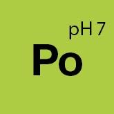 92001_Koch_Chemie_Po_Pol_Star_solutie_curatare_textile_piele_si_alcantara_1ltr [2]