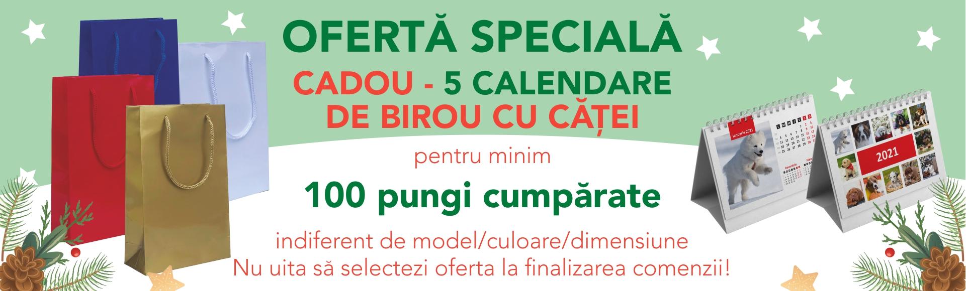 Banner oferta calendare