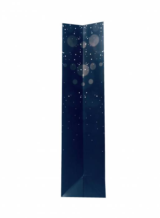 Punga de cadou mare cu model elegant de Craciun [5]