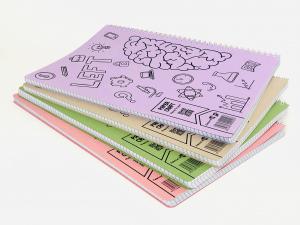 Set 4 bucati Caiet Matematica A4 cu spira dubla, 100 file, coperta carton1