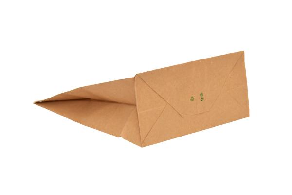 punga-transport-PaperBag-pungi-hartie [1]