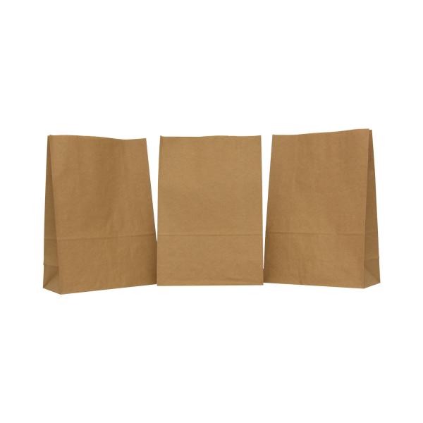 punga-transport-PaperBag-pungi-hartie [2]