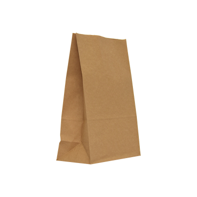 punga-transport-PaperBag-pungi-hartie [0]