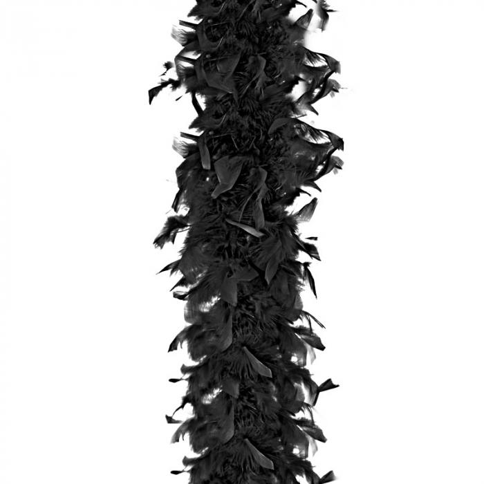 Sal pene Boa Negru - 180 cm [0]
