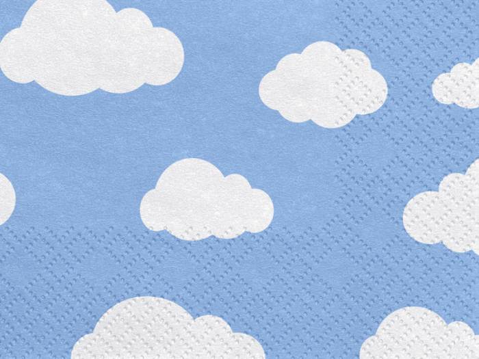 Set 20 Servetele Bleu Norisori 1