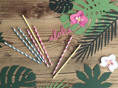 Set 6 Decoratiuni Aloha - Orhidee [3]