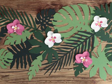 Set 6 Decoratiuni Aloha - Orhidee [4]
