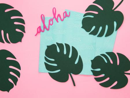 Set 6 Decoratiuni Frunza - Aloha2