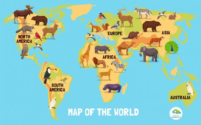 Harta lumii cu animale 0