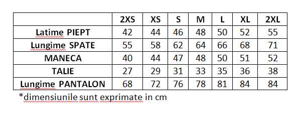 Trening Cationic PEAK Style dama gri [9]