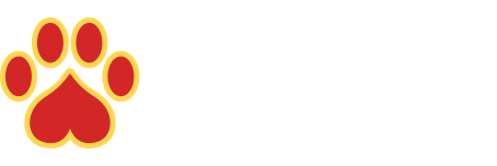 Exotic-K