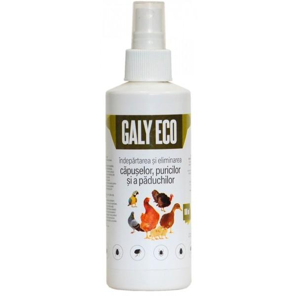 Galy Eco Spray 100ml 0
