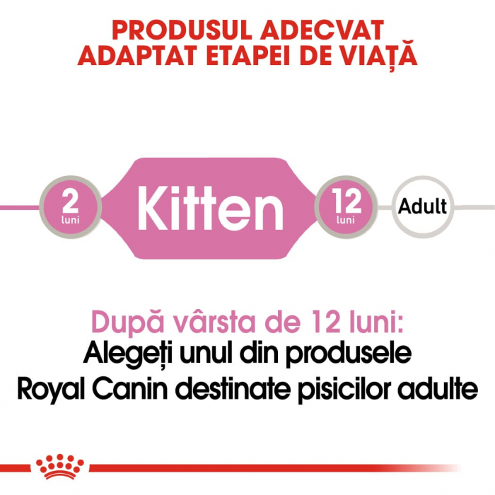 ROYAL CANIN Kitten in Loaf Pouch 12 plicuri x 85 g 1