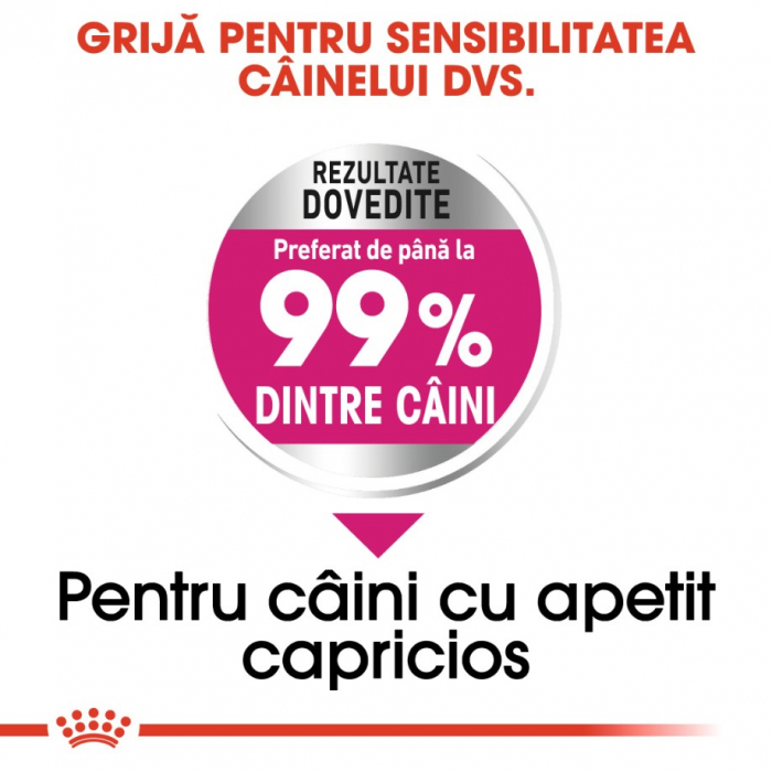 Royal Canin Mini Exigent 3kg 2