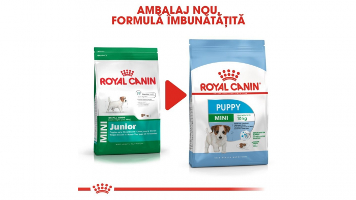 Royal Canin Mini Puppy 800 g 1