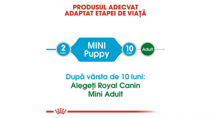 Royal Canin Mini Puppy 800 g 2