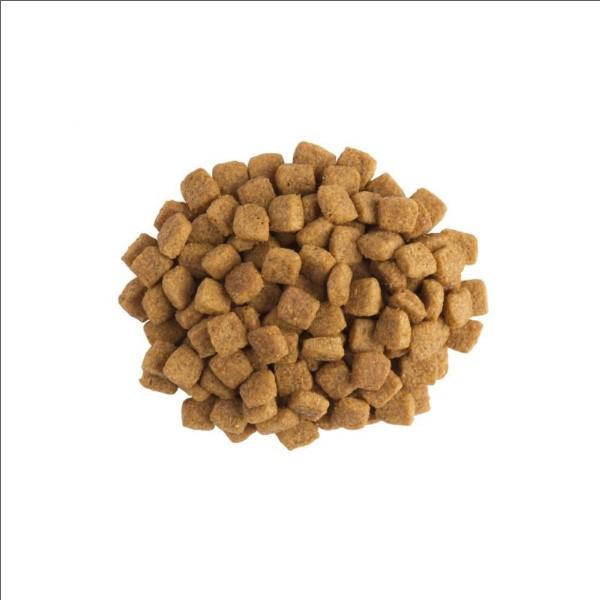 Purina UR St/Ox Cat - dieta pentru pisici cu probleme urinare - 5 kg 1