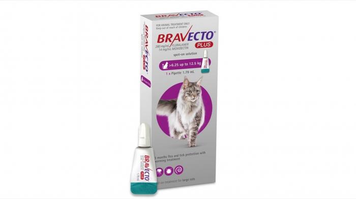 Bravecto Plus Spot On Cat 500 mg (6.25 - 12.5 kg), 1 pipeta [0]