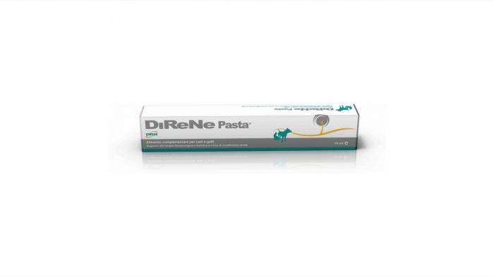 DIRENE Pasta, 15 ml [0]