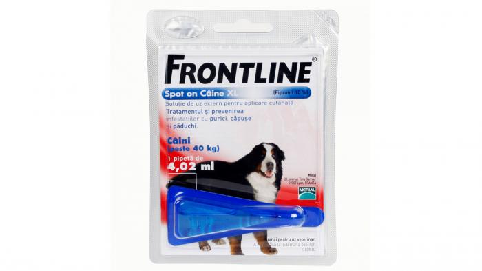 Frontline Spot On XL (40-60 kg) - 1 Pipeta Antiparazitara (Fipronil) 1
