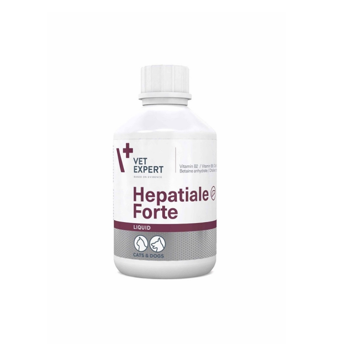 Hepatiale Forte Liquid,  250 ml 0