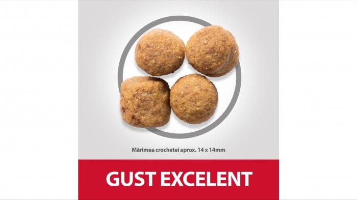 Hill's SP Adult Medium Breed hrana pentru caini cu miel si orez, 2.5 kg [2]