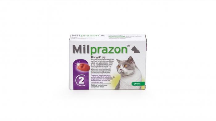 Milprazon Cat 16 / 40 mg (2 - 8 kg), 2 tablete 0