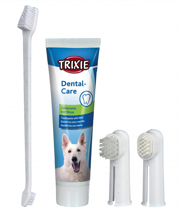 Set Periuta si Pata pentru dinti Dinti 0