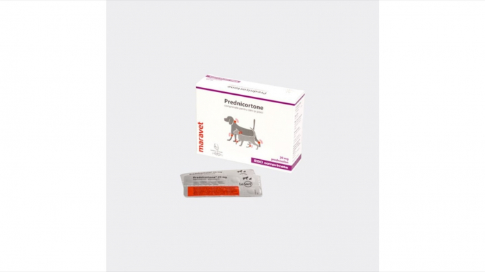 Prednicortone 20 mg, 250 tablete [0]