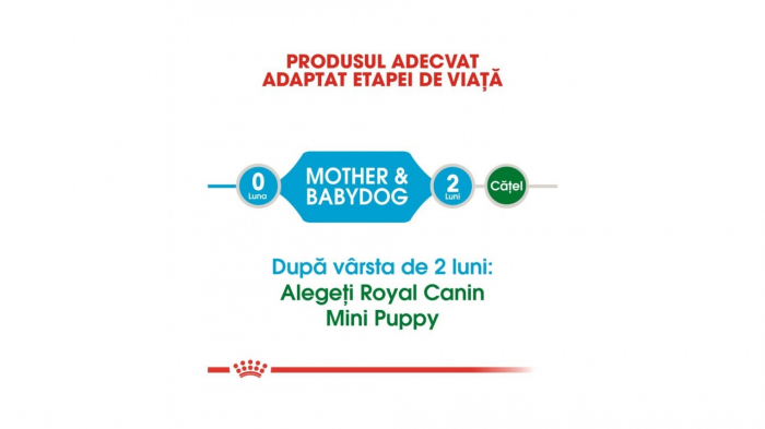 Royal Canin Mini Starter 3 kg 2