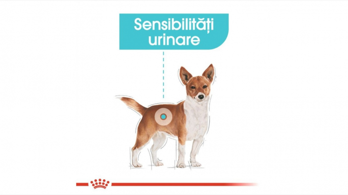 Hrana Royal Canin Mini Urinary Care, 8 Kg 5