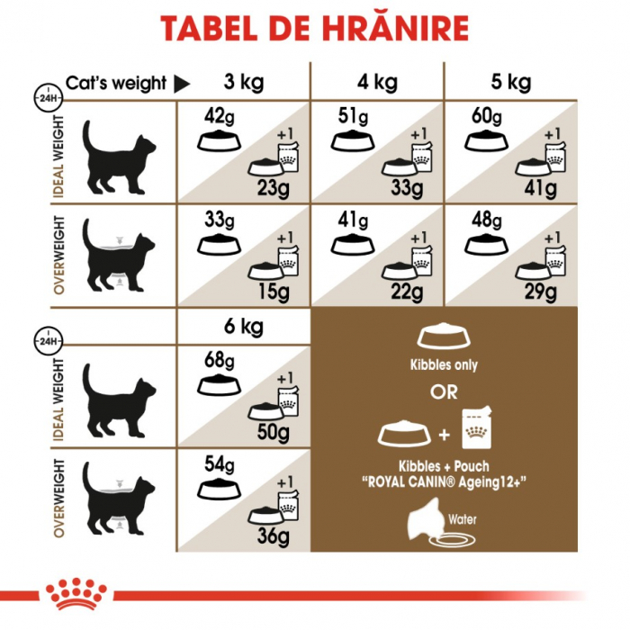Royal Canin Feline Ageing +12 ani, 4 kg [5]