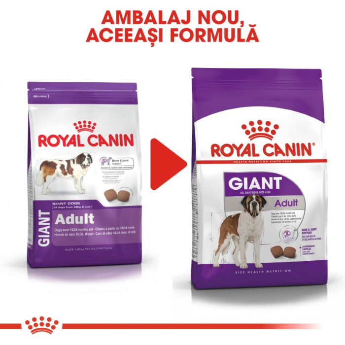 Royal Canin Giant Adult 15 Kg 1