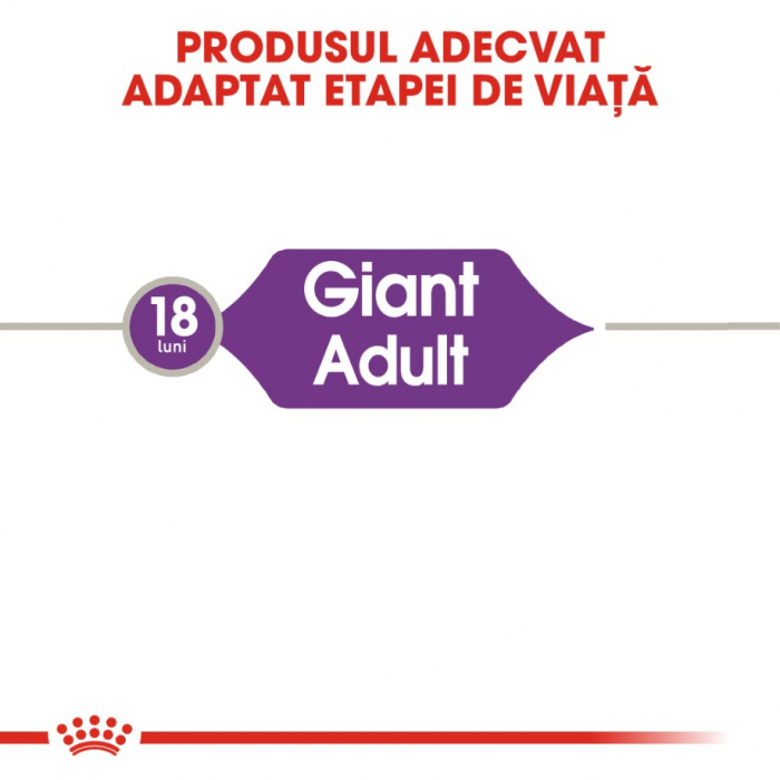 Royal Canin Giant Adult 15 Kg 3