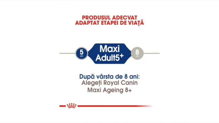 Royal Canin Maxi Adult (5+), 4 Kg 2